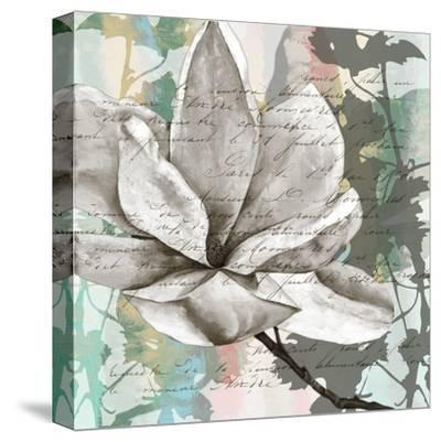 Pastel Magnolias II-Jennifer Goldberger-Stretched Canvas Print