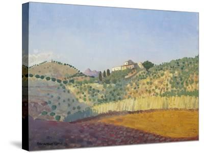 Métairie Des Abeilles-Derwent Lees-Stretched Canvas Print