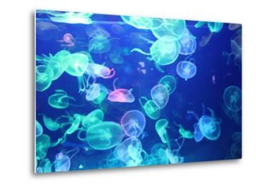 Glowing Jellyfish-zhifengyuman-Metal Print