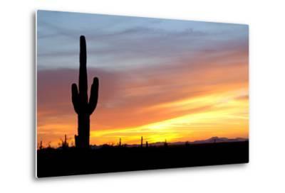 Desert Sunset with Saguaro Cactus-Christina E-Metal Print