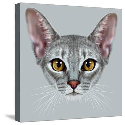 Illustrative Portrait of Abyssinian Cat. Cute Breed of Domestic Short Haired Cat with a Distinctive-ant_art19-Stretched Canvas Print