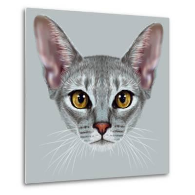 Illustrative Portrait of Abyssinian Cat. Cute Breed of Domestic Short Haired Cat with a Distinctive-ant_art19-Metal Print