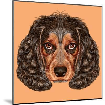 Image result for russian spaniel art