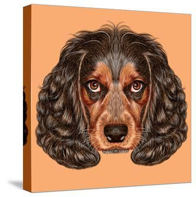 Illustrative Portrait of Spaniel Dog. Cute Young Russian Hunting Spaniel.-ant_art19-Stretched Canvas Print