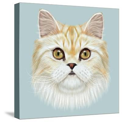 Illustrated Portrait of Persian Cat.-ant_art19-Stretched Canvas Print
