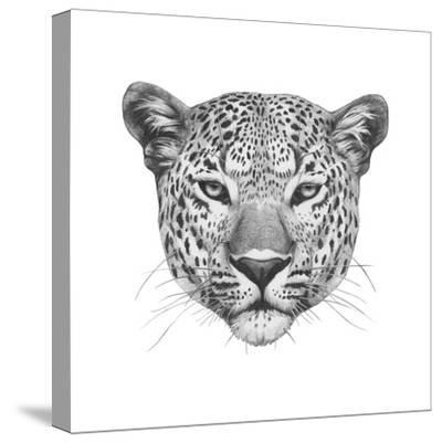 Original Drawing of Leopard. Isolated on White Background.-victoria_novak-Stretched Canvas Print