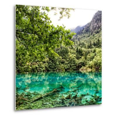China 10MKm2 Collection - Beautiful Lake in the Jiuzhaigou National Park-Philippe Hugonnard-Metal Print