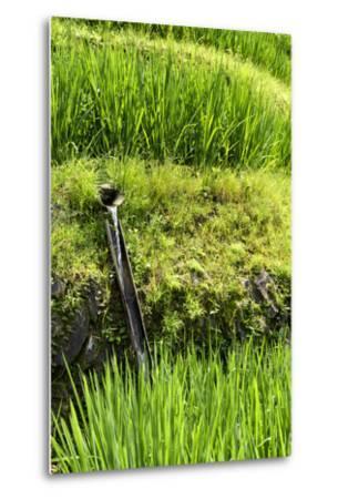 China 10MKm2 Collection - Rice Terraces - Longsheng Ping'an - Guangxi-Philippe Hugonnard-Metal Print