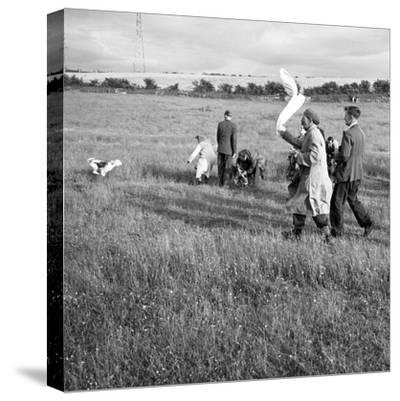 Hound Trailing, One of Cumbrias Oldest and Most Popular Sports, Keswick, 2nd July 1962-Michael Walters-Stretched Canvas Print