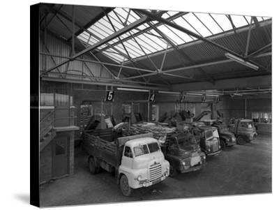 Line Up of 1950S Lorries at Spillers Animal Foods, Gainsborough, Lincolnshire, 1961-Michael Walters-Stretched Canvas Print