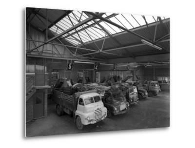 Line Up of 1950S Lorries at Spillers Animal Foods, Gainsborough, Lincolnshire, 1961-Michael Walters-Metal Print