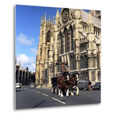 Tetley Shire Horses Outside York Minster, North Yorkshire, 1969-Michael Walters-Metal Print