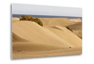 Maspalomas Sand Dunes, Gran Canaria, Canary Islands, Spain-Peter Thompson-Metal Print