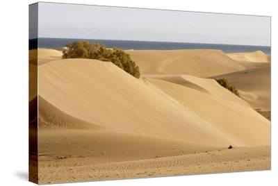 Maspalomas Sand Dunes, Gran Canaria, Canary Islands, Spain-Peter Thompson-Stretched Canvas Print