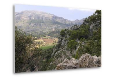 Mountain Scenery Near Lluc, Mallorca-Peter Thompson-Metal Print