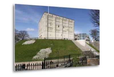 Norwich Castle, Norfolk, 2010-Peter Thompson-Metal Print