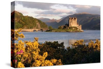 Eilean Donan Castle, Highland, Scotland-Peter Thompson-Stretched Canvas Print