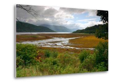 Loch Sunart from Strontian, Highland, Scotland-Peter Thompson-Metal Print