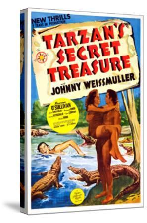 Tarzan's Secret Treasure--Stretched Canvas Print