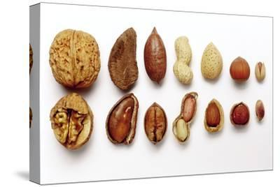 Various Nuts, Shelled and Unshelled-Eising Studio - Food Photo and Video-Stretched Canvas Print