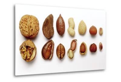Various Nuts, Shelled and Unshelled-Eising Studio - Food Photo and Video-Metal Print