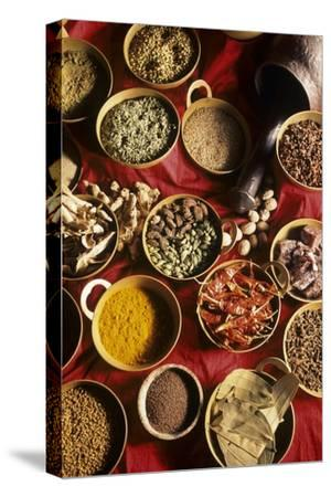 Still Life with Exotic Spices-Frederic Vasseur-Stretched Canvas Print