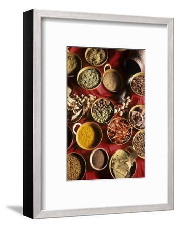 Still Life with Exotic Spices-Frederic Vasseur-Framed Premium Photographic Print