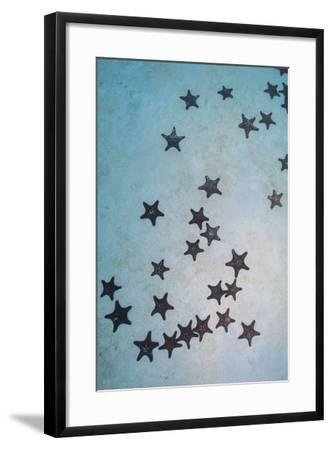 Cluster of Red and Black Pin Cushion Stars on a Sandy Bottom-Stocktrek Images-Framed Photographic Print