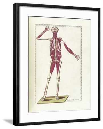 The Science of Human Anatomy by Bartholomeo Eustachi-Stocktrek Images-Framed Art Print