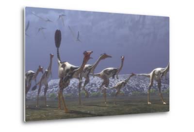 Herd of Mononykus Followed by a Flock of Pteranodons-Stocktrek Images-Metal Print