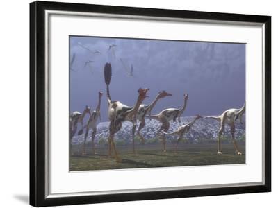 Herd of Mononykus Followed by a Flock of Pteranodons-Stocktrek Images-Framed Art Print
