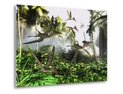 A Flock of Pterodactylus Reptiles Fly over the Jungle Searching for their Next Meal-Stocktrek Images-Metal Print