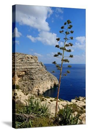 Blue Grotto Coast Malta-Diana Mower-Stretched Canvas Print