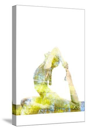 Nature Harmony Healthy Lifestyle Concept - Double Exposure Image of Woman Doing Yoga Asana King Pig-f9photos-Stretched Canvas Print
