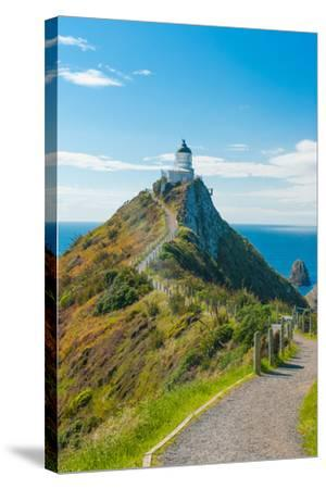 Nugget Point-Fyle-Stretched Canvas Print