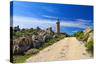 Road to Lighthouse - San Pietro Isle, Sardinia, Italy-Antonio Scarpi-Stretched Canvas Print