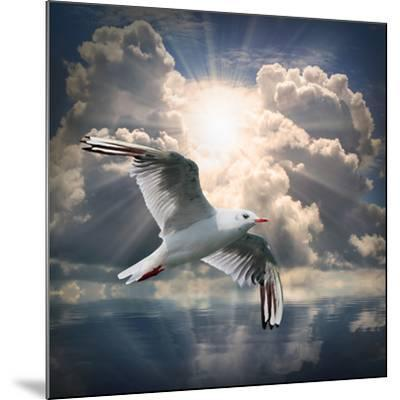 The Seagull Flying Over A Sea Against A Dramatic Sky. Background From Nature-Kletr-Mounted Premium Photographic Print