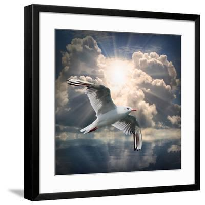 The Seagull Flying Over A Sea Against A Dramatic Sky. Background From Nature-Kletr-Framed Premium Photographic Print