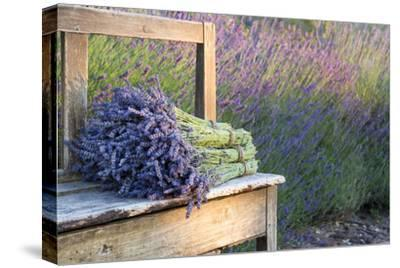 Bouquets on Lavenders on a Wooden Old Bench-Anna-Mari West-Stretched Canvas Print