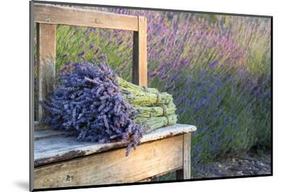 Bouquets on Lavenders on a Wooden Old Bench-Anna-Mari West-Mounted Premium Photographic Print
