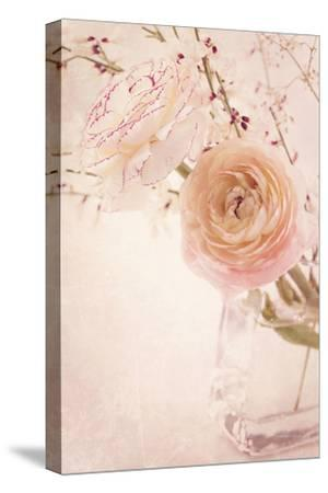 Ranunculus Flowers in a Vase-egal-Stretched Canvas Print