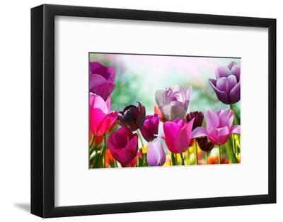 Beautiful Spring Flowers-Monia-Framed Premium Photographic Print