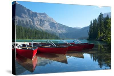 Emerald Lake- Underwatermaui-Stretched Canvas Print