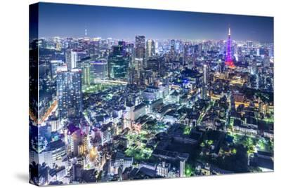 Tokyo, Japan City Skyline with Tokyo Tower and Tokyo Skytree in the Distance.-SeanPavonePhoto-Stretched Canvas Print