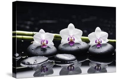 Spa Still Life with Three Orchid and Zen Stones with Bamboo Grove Reflection-crystalfoto-Stretched Canvas Print
