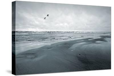 Stylized Monochrome Photo: Two Seagulls and Empty Coast of the Sea. Gulf of Finland, Baltic Sea, Na-Eugene Sergeev-Stretched Canvas Print