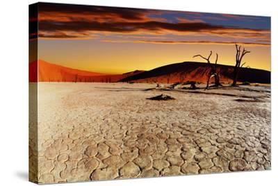 Namib Desert, Sossusvlei, Namibia-DmitryP-Stretched Canvas Print