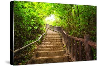 Stairway to Forest, Erawan National Park,Kanchanburi,Thailand-lkunl-Stretched Canvas Print