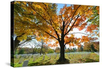 Arlington National Cemetery near to Washington Dc, in Autumn-Orhan-Stretched Canvas Print