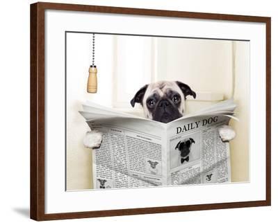 Dog Toilet-Javier Brosch-Framed Premium Photographic Print